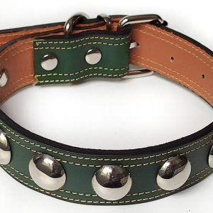 Collar de perro grande color verde en pie verde